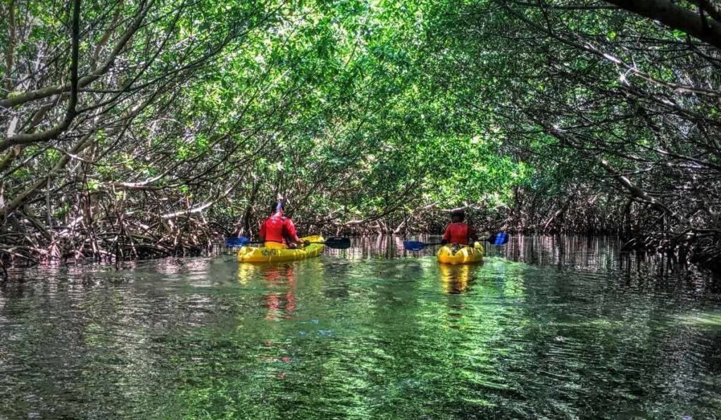 13. Kayak - Things to do in San Juan Puerto Rico