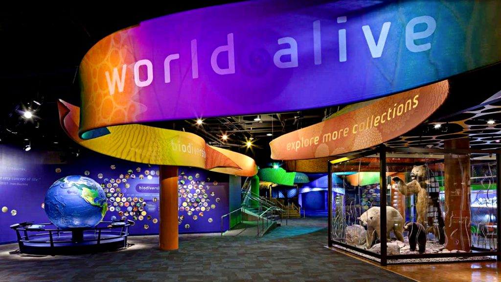2. Discovery Place - Things to do in Charlotte NC
