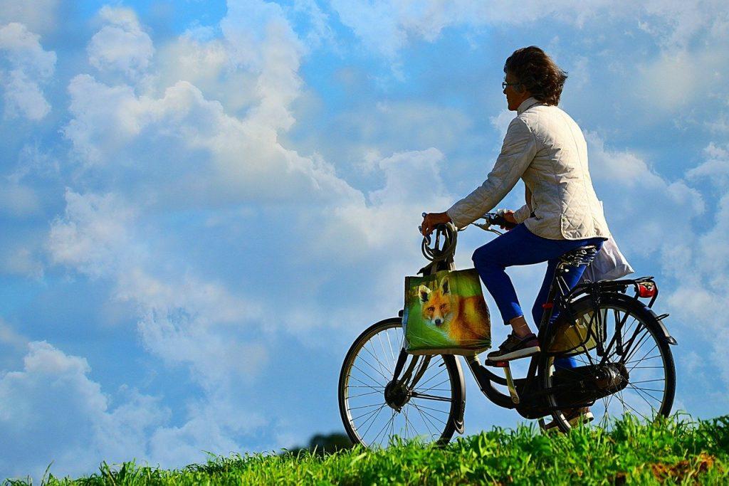 Biking Statistics 1