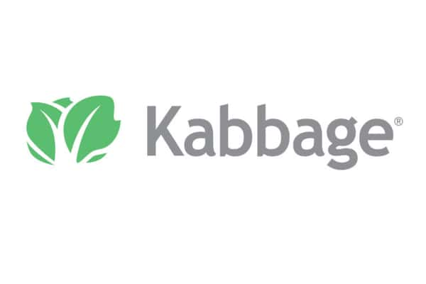 Kabbage-review