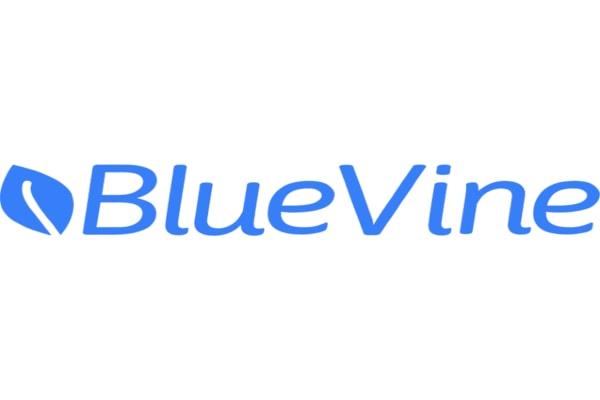 BlueVine-review